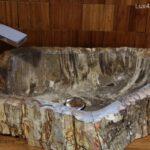 Natural petrified wood vessel sinks