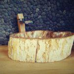 petrified wood wash basins - sinks